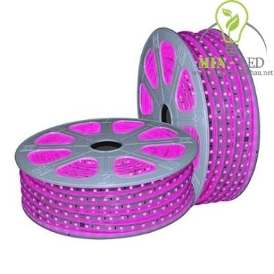 Đèn led dây Duhal 6W ánh sáng hồng 6W/M LDH01