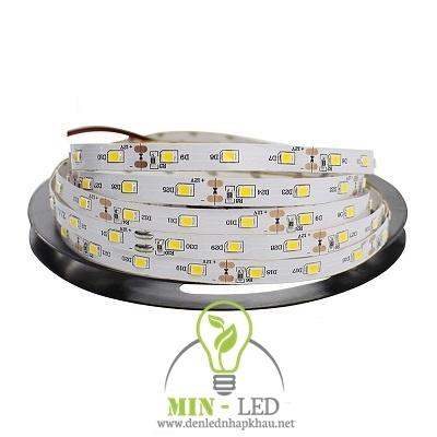 Đèn led dây Paragon 12W LED2835