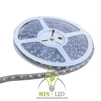 Đèn led dây Paragon 14.4W LED5050