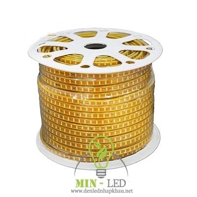 Đèn led dây TLC 6W đôi 2835 ba màu