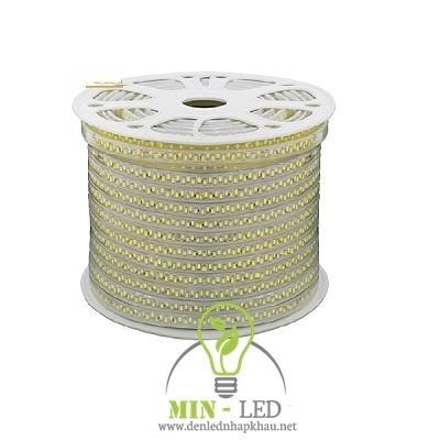 Đèn led dây TLC 8W đôi 5730 ba màu