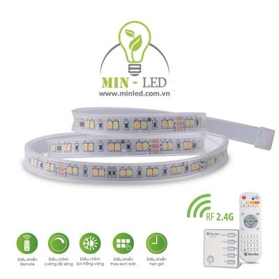 Đèn LED dây Rạng Đông