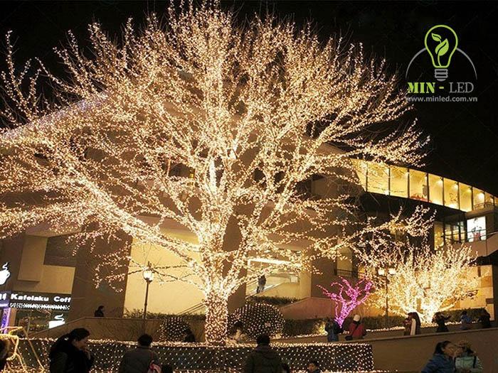 Những đèn LED nhỏ trang trí cây, ngoại cảnh quán cafe - 1