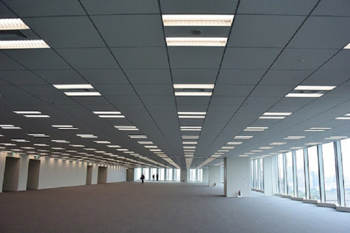 Đèn LED Panel dự phòng hình chữ nhật 38W - D P02 DP 30x120/38W