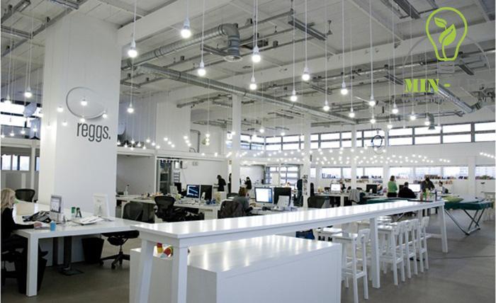 Đèn LED Rạng Đông chiếu sáng không gian văn phòng rộng rãi -1