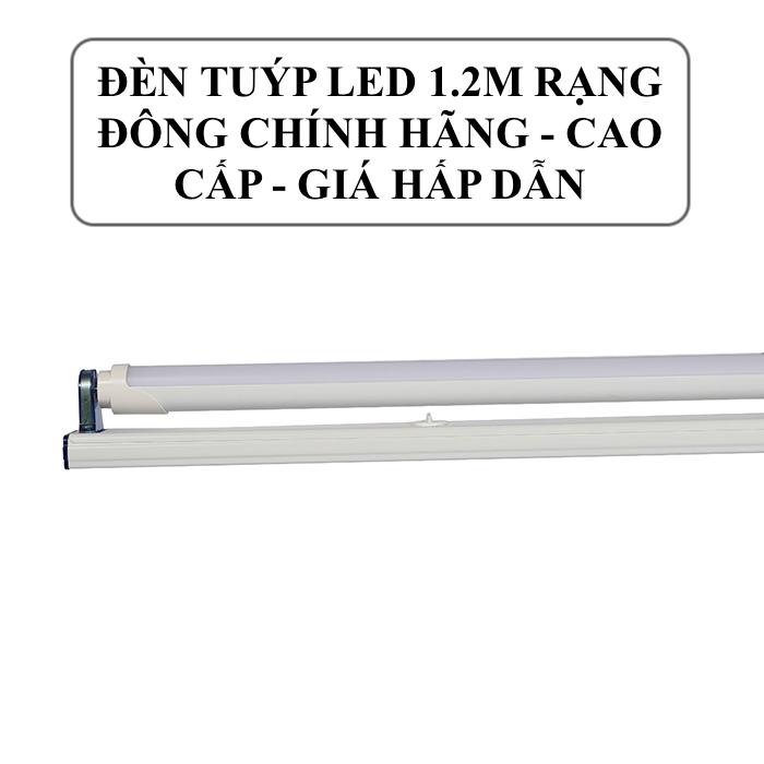 Tổng hợp các mẫu đèn LED 1.2m Rạng Đông thịnh hành nhất