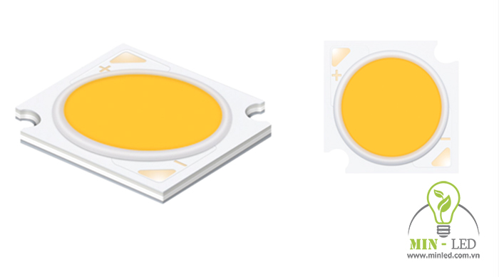 Chip LED dòng D