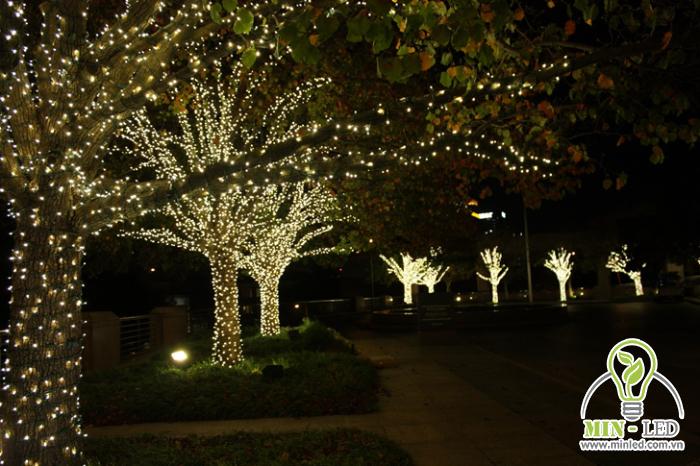 Thiết kế đèn LED trang trí treo lên cây