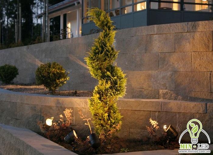 Đèn hắt cây sân vườn giúp chiếu sáng và làm nổi bật cây cảnh trong vườn